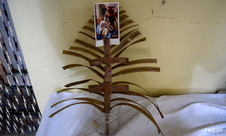 palm from palm sunday