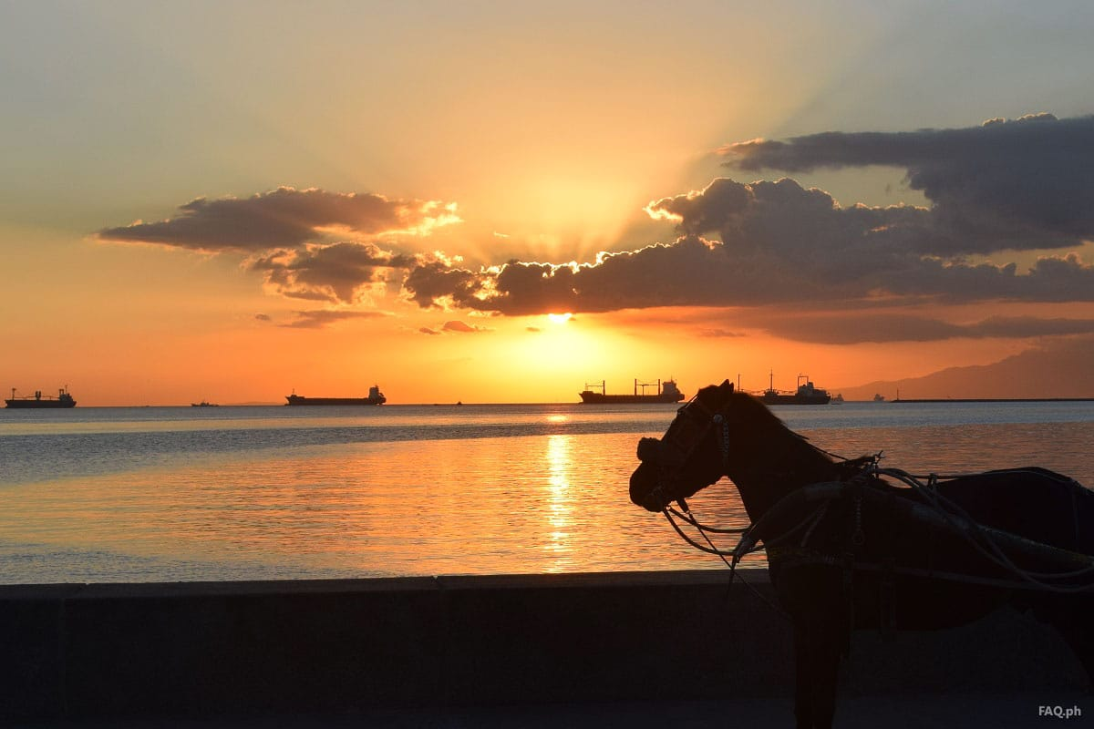 Horse at Manila Bay Sunset