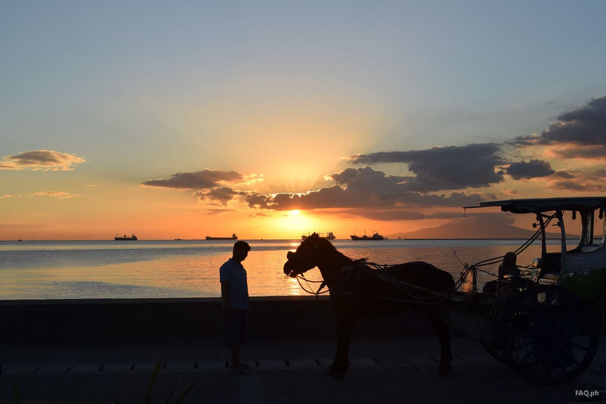 Horse and man at Manila Bay
