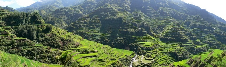 Pana_Banaue_Rice_Terraces